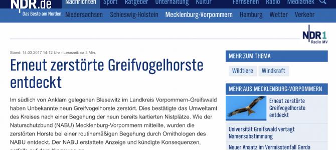Vorpommern-Greifswald – Erneut zerstörte Greifvogelhorste entdeckt. Bericht des NDR vom 14.03.2017