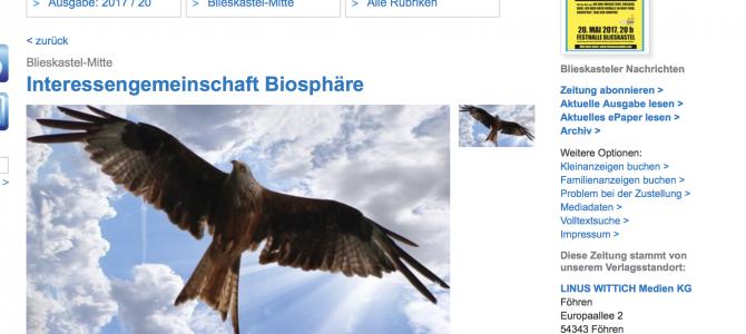 """Dramatischer Rückgang der Greifvögel – u.a. Rotmilane – im Bereich """"Windkraftanlagen Blieskastel-Webenheim"""" seit Errichtung der WEA"""